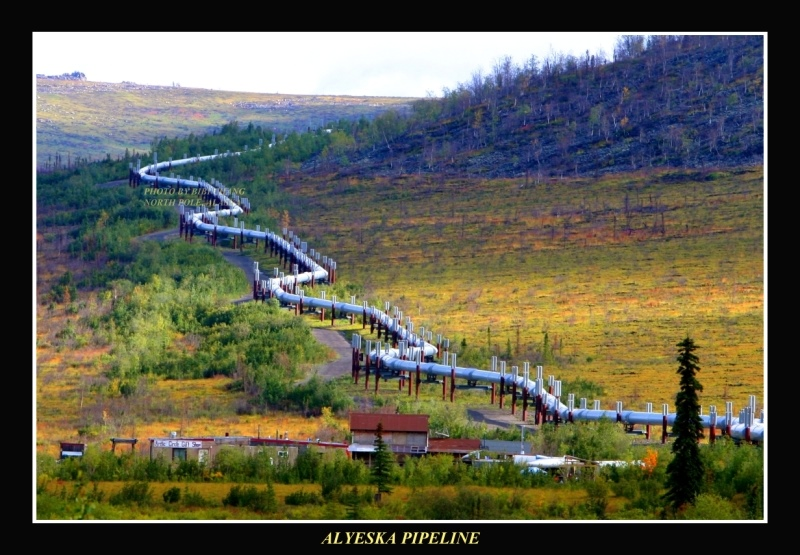 http://www.go2moon.com/image/Landscape/Alaska-Pipeline-5-8723-2.JPG